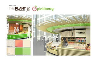 San Francisco – Plant Pinkberry