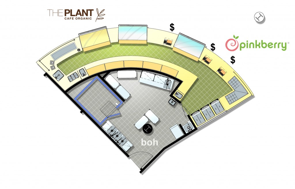 plant pinkberry plan-SF